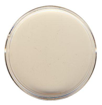 Münzen Kapsel Durchmesser 65 mm für (z. B.) 5 Unzen - 5 Oz - Lunar II / Libertad in Silber